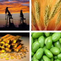 Commodities rise in November