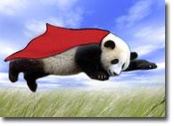 panda_flyingBACK