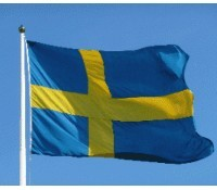 Should we mimic the Swedes?
