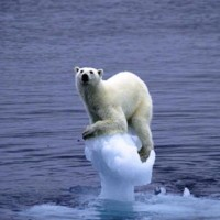 IPCC hikes its global warming certainty