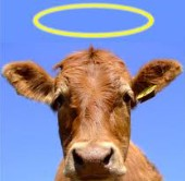 True reform requires slaying all sacred cows