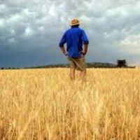 Moving beyond the agriculture of entitlement