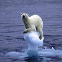 UN: Climate change broad and worsening