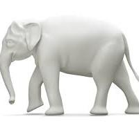 JPM mounts Australia's LNG white elephant
