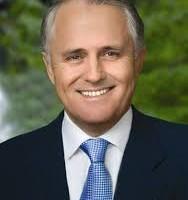 Turnbull says Bolt unhinged over leadership