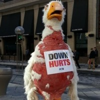 """Bad, not high, taxes are """"killing the goose"""" (members)"""
