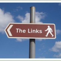 the-links1-300x233