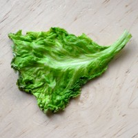 APRA's wet lettuce weighing on investment lending?