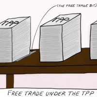 Robb mulls back door TPP sell-out