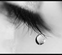 The sad decline of Trevor Sykes