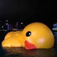 Why the PC's IP inquiry is a lame duck