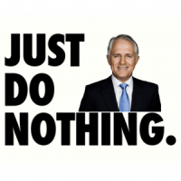 Do-nothing Malcolm wanders into bushes on energy