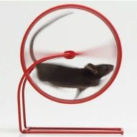 RBA, Treasury plan Victoria's rat treadmill economy for all