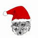 MB over the Christmas break