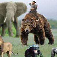 Gundlach: Huge bond bear market to come