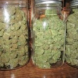 Drug Law Reform Foundation: legalise and tax pot