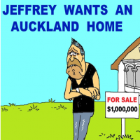 NZ Labour falls further into housing abyss
