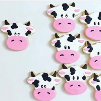 RBA cookie cuts another housing bull