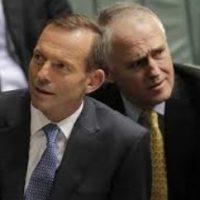 Coalition splinters over company tax cuts