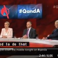 Laberal pretends to care about immigration fallout on Q&A