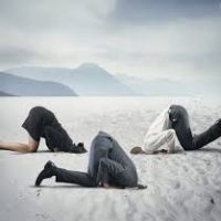 Corrupt RBA spears head into immigration sand