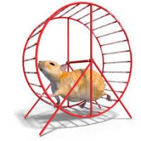 The rat wheel economy does not do wages growth