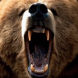 Martin North maintains the bearish property rage