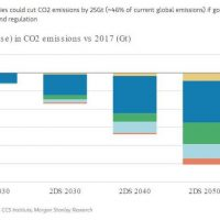 MS: Climate change a key asset price driver henceforth