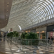 Chadstone retailers demand three month's free rent
